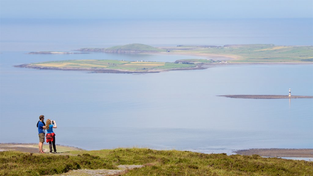 Knocknarea showing general coastal views as well as a couple