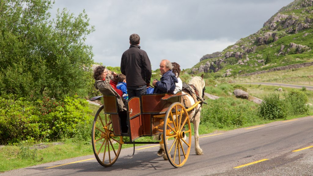 Killarney featuring horseriding as well as a small group of people