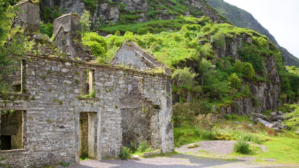 Gap of Dunloe which includes tranquil scenes and a ruin