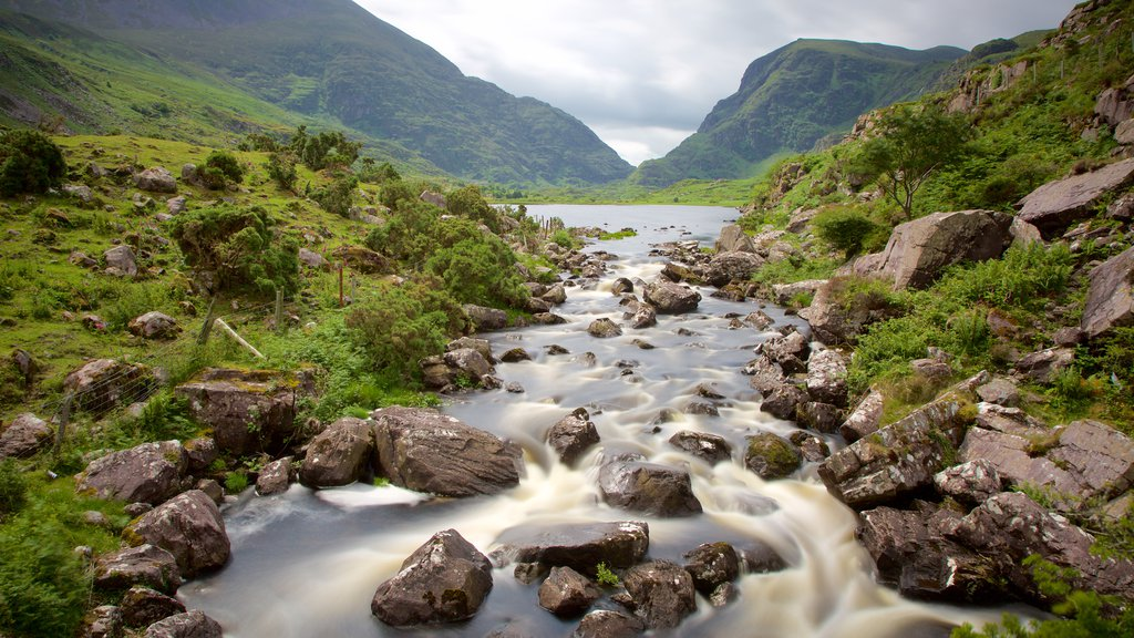 Gap of Dunloe showing tranquil scenes and a river or creek