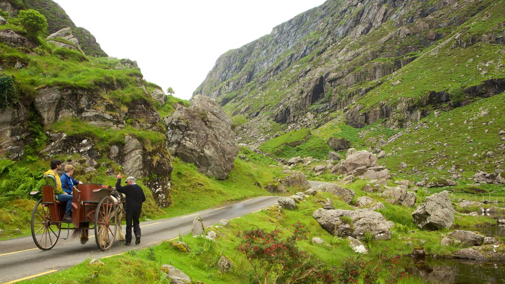 Gap of Dunloe featuring horseriding, tranquil scenes and mountains