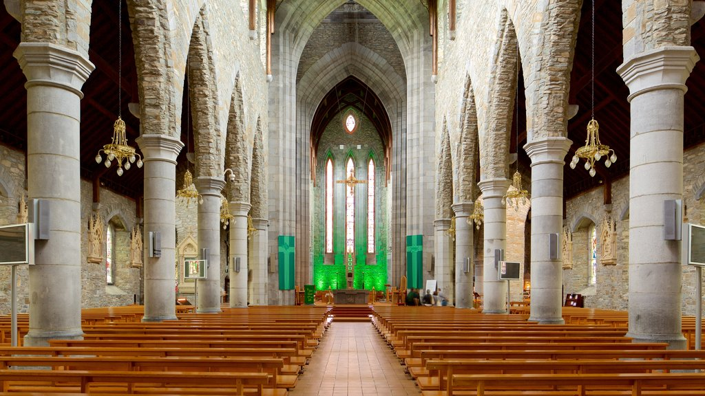 Killarney Cathedral showing heritage elements, heritage architecture and a church or cathedral