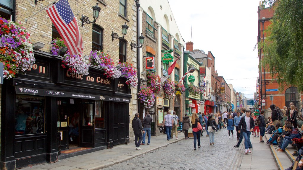 Temple Bar featuring a city, street scenes and flowers
