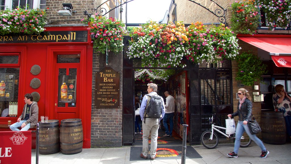 Temple Bar which includes a bar, signage and flowers