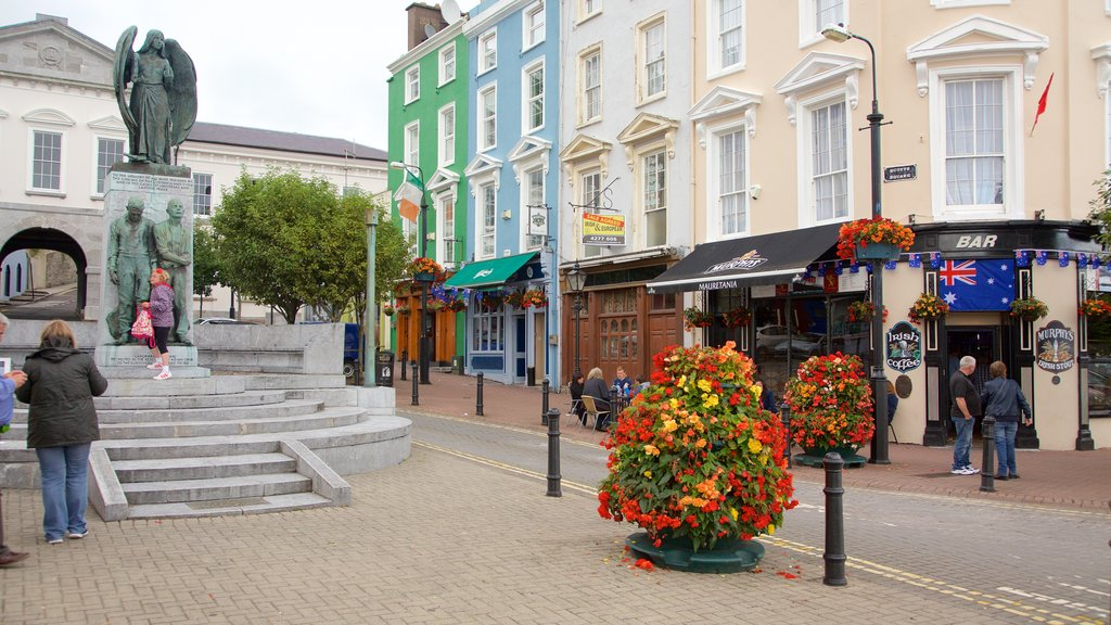 Cobh showing heritage elements, flowers and street scenes