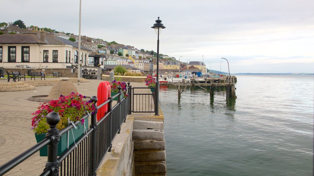 Cobh which includes a small town or village, a lake or waterhole and flowers