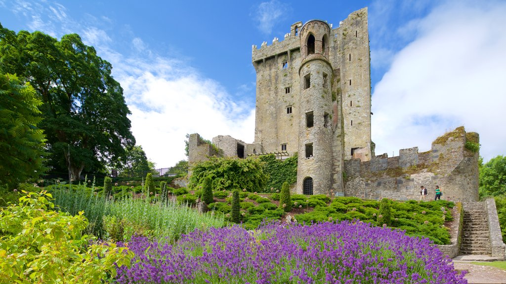 Blarney Castle showing chateau or palace, heritage architecture and heritage elements