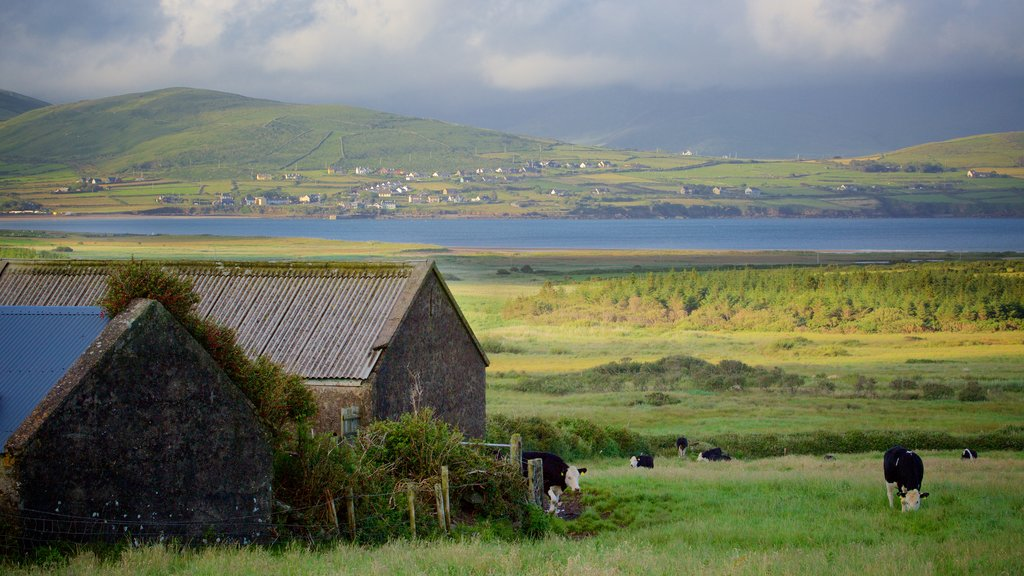 Dingle which includes farmland, landscape views and a river or creek