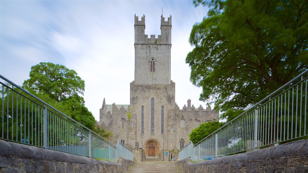 St. Mary\'s Cathedral featuring heritage elements, chateau or palace and heritage architecture