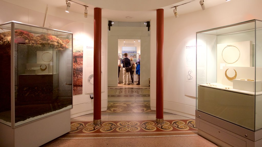National Museum of Ireland - Archaeology and History which includes interior views as well as a small group of people