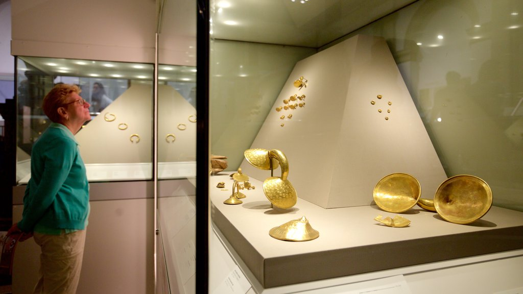 National Museum of Ireland - Archaeology and History showing interior views as well as an individual male