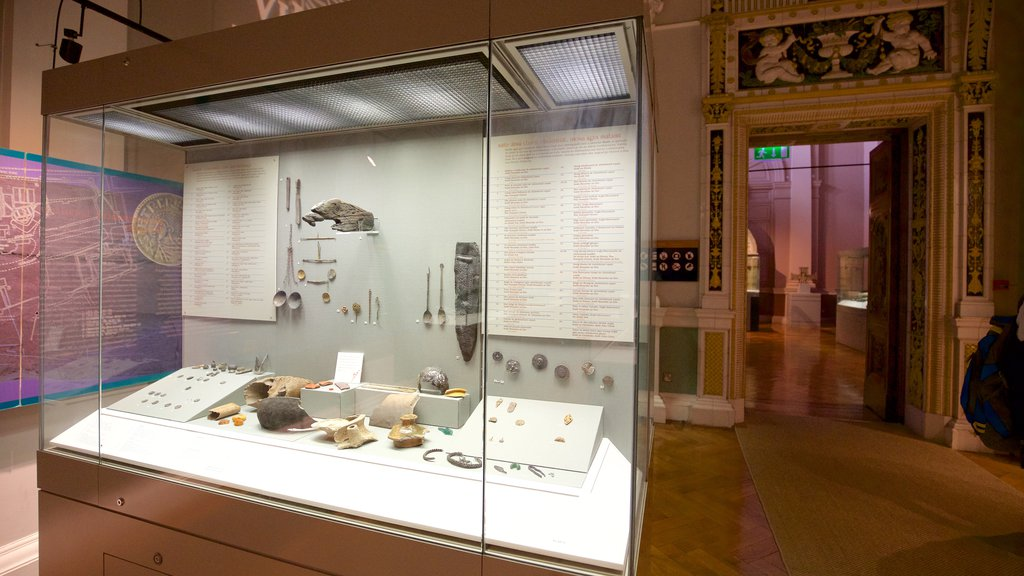 National Museum of Ireland - Archaeology and History which includes heritage elements and interior views