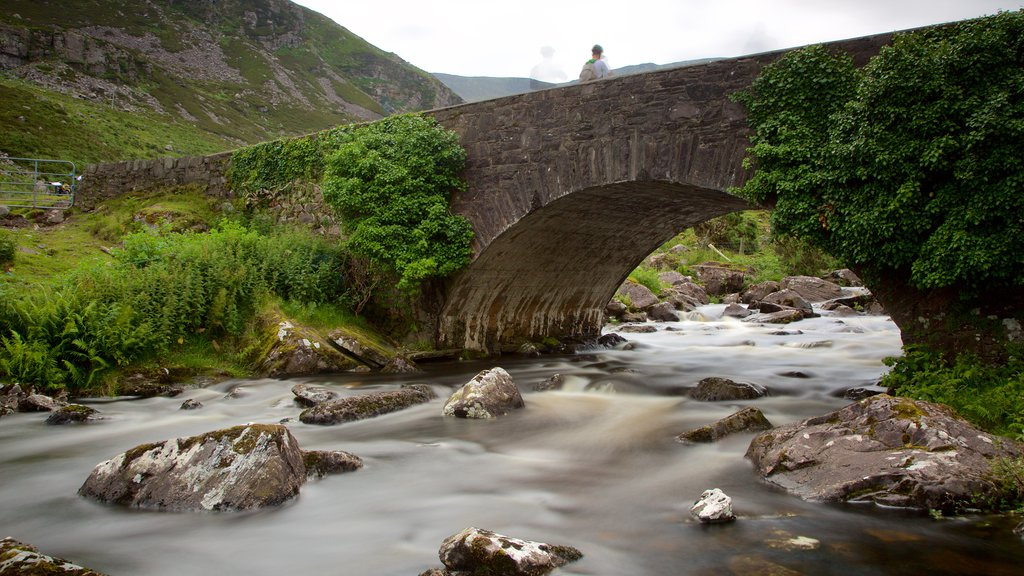 Gap of Dunloe showing a bridge, tranquil scenes and a river or creek