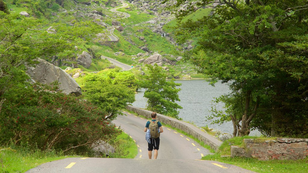 Gap of Dunloe which includes hiking or walking, tranquil scenes and a lake or waterhole