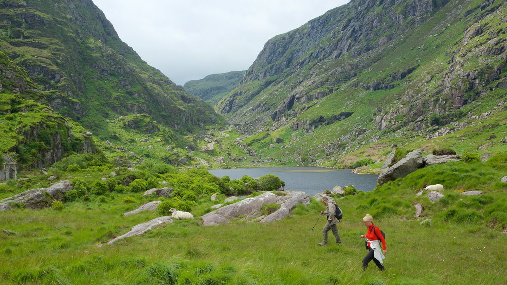 Gap of Dunloe featuring tranquil scenes, a lake or waterhole and hiking or walking
