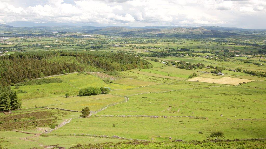 Knocknarea featuring tranquil scenes and landscape views