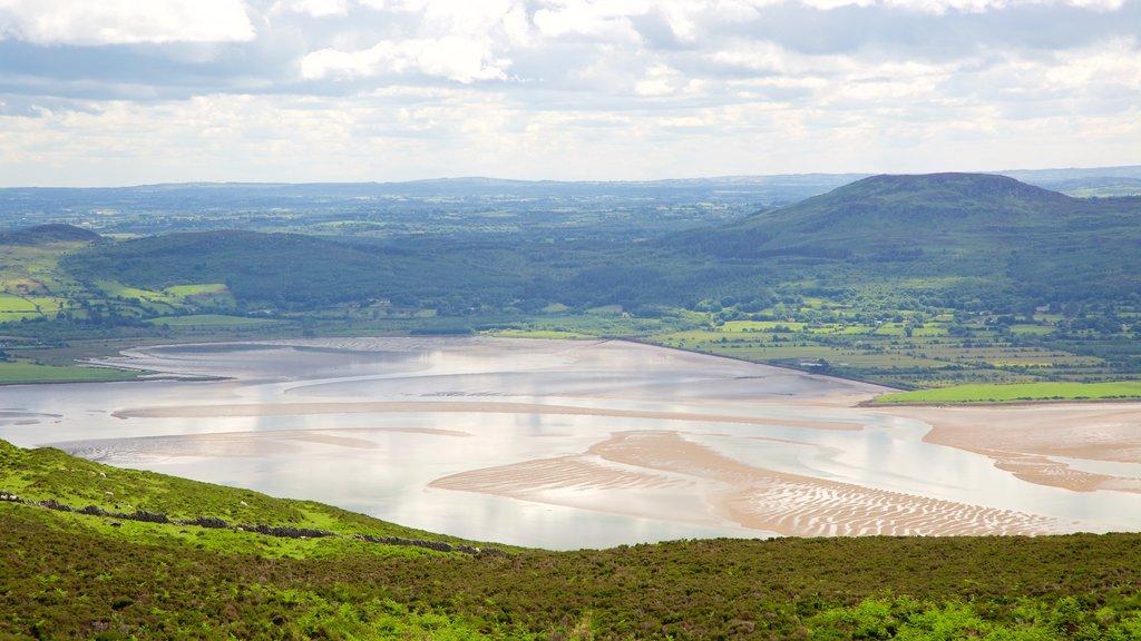 Knocknarea showing tranquil scenes and landscape views