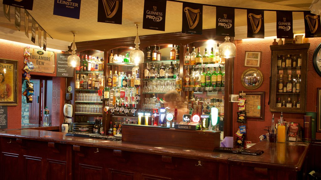 Dublin showing a bar, interior views and heritage elements