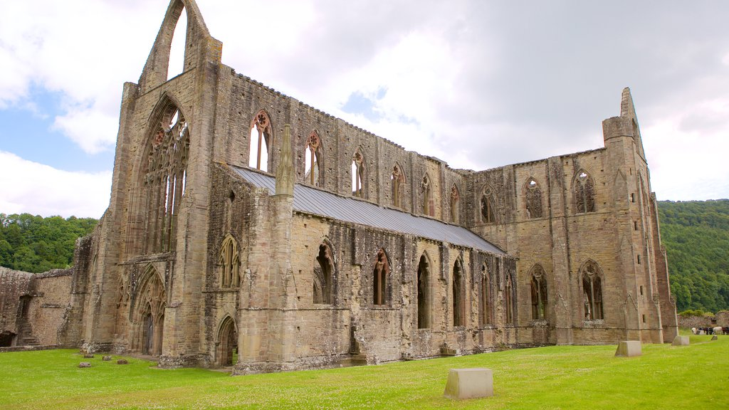 Tintern Abbey showing heritage elements, a church or cathedral and a castle