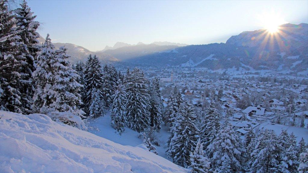 Garmisch-Partenkirchen Ski Resort showing landscape views, a small town or village and forests