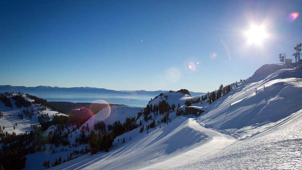 Alpine Meadows which includes snow, tranquil scenes and landscape views