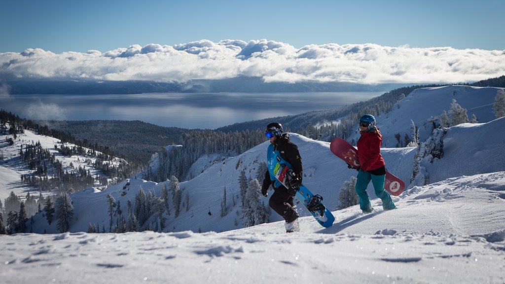 Alpine Meadows which includes snow boarding, snow and landscape views