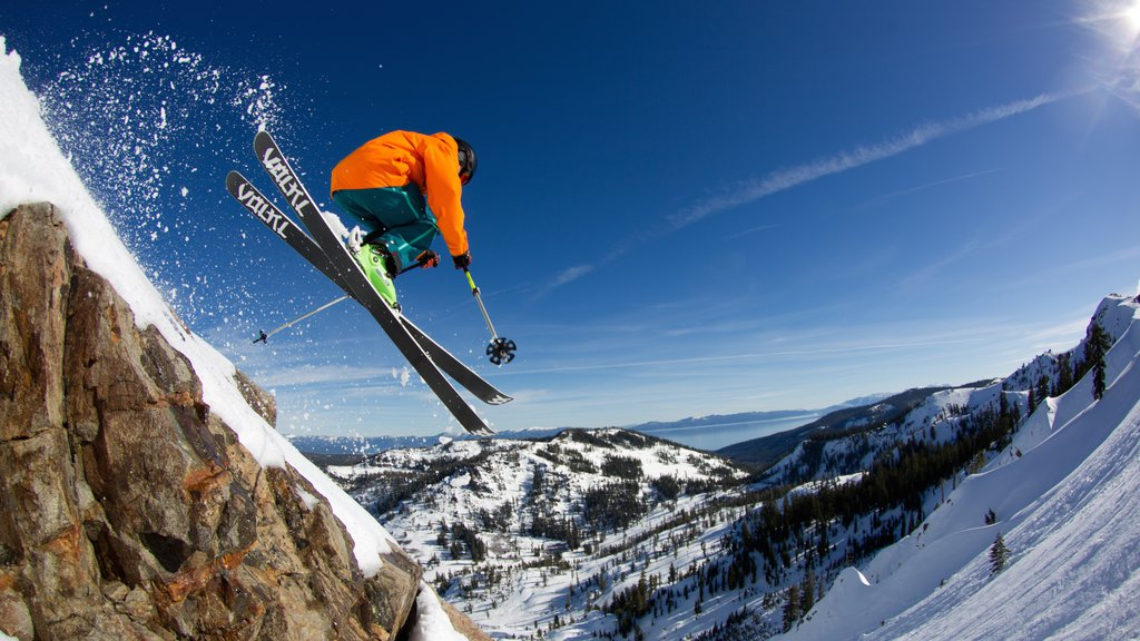 Alpine Meadows featuring tranquil scenes, snow skiing and snow