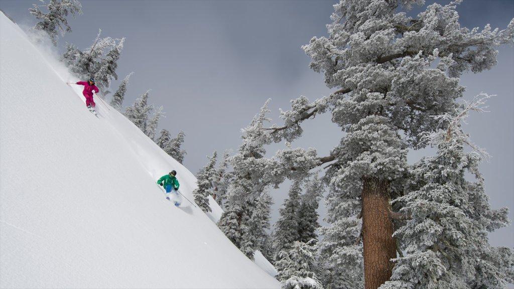 Squaw Valley Resort que incluye esquiar en la nieve y nieve y también una pareja