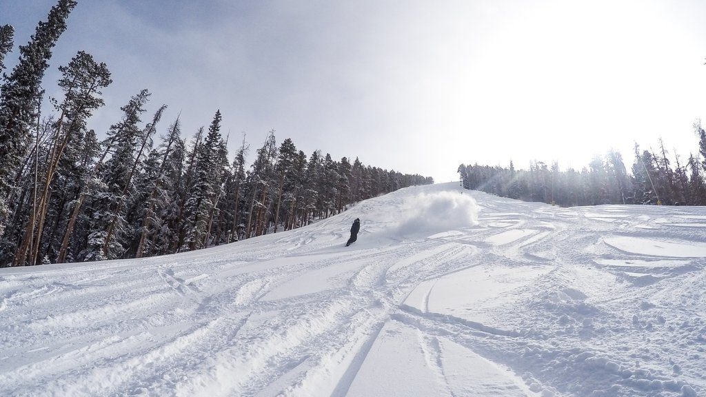 Keystone Ski Resort which includes mountains, snow and forests
