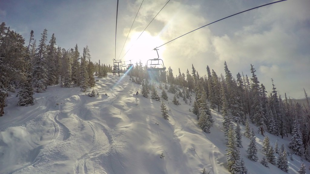 Keystone Ski Resort which includes forest scenes, snow and a gondola