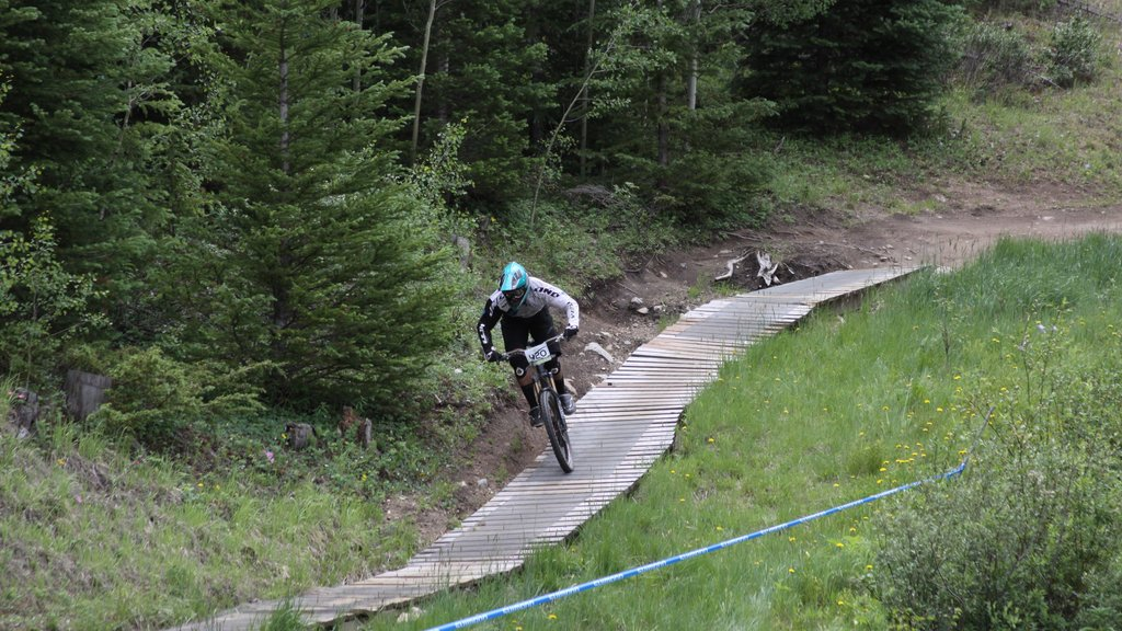 Keystone Ski Resort showing mountain biking as well as an individual male