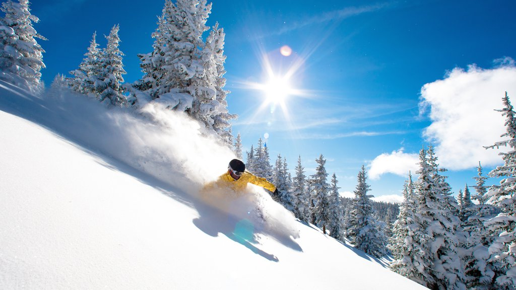 Vail Ski Resort which includes snow skiing and snow as well as an individual male