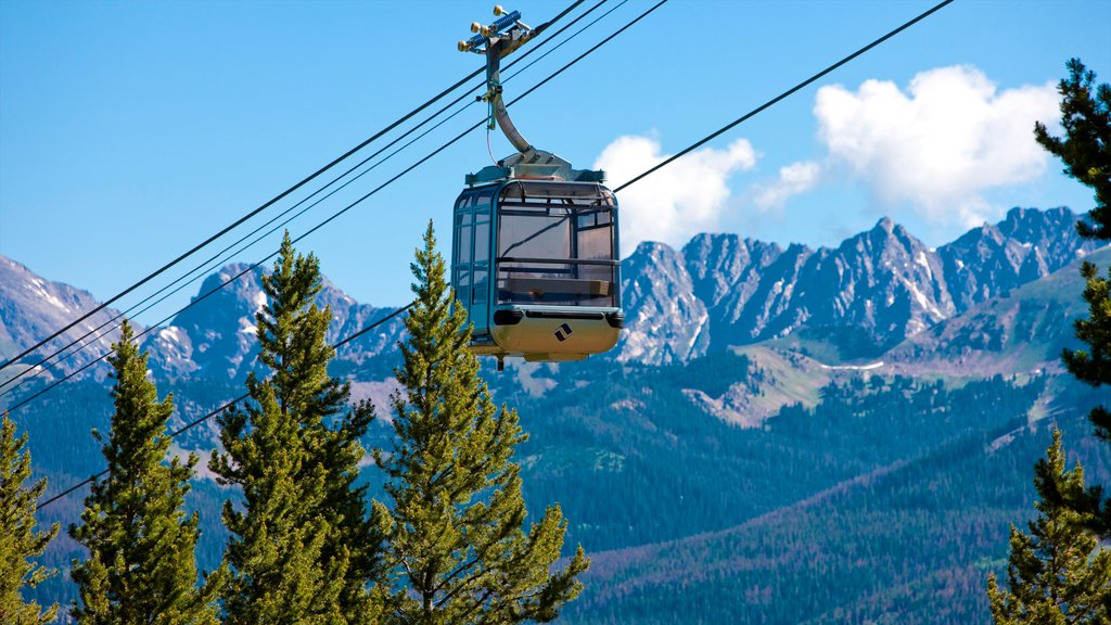 Vail Ski Resort showing a gondola