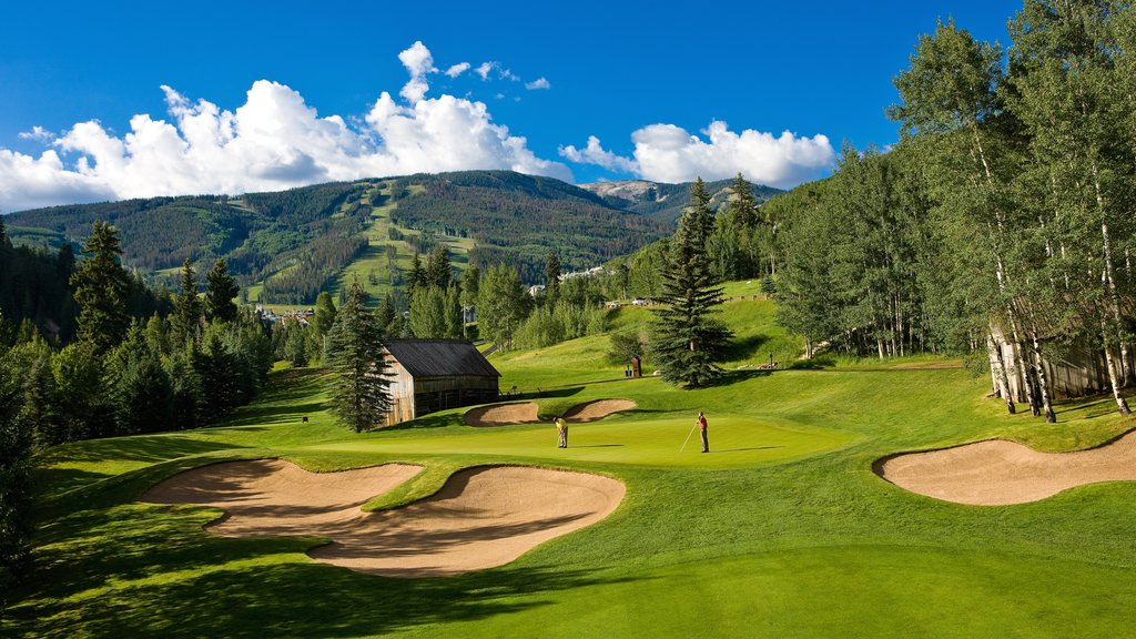 Beaver Creek which includes forests, golf and landscape views