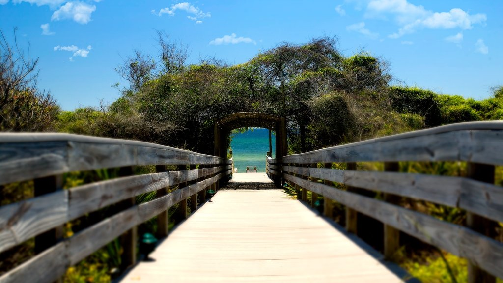 Seagrove Beach featuring a bridge and general coastal views