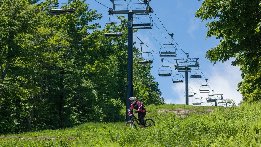 Mount Snow which includes a gondola and mountain biking as well as an individual male
