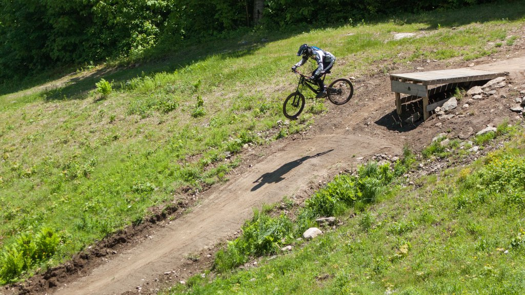 Mount Snow showing mountain biking as well as an individual male
