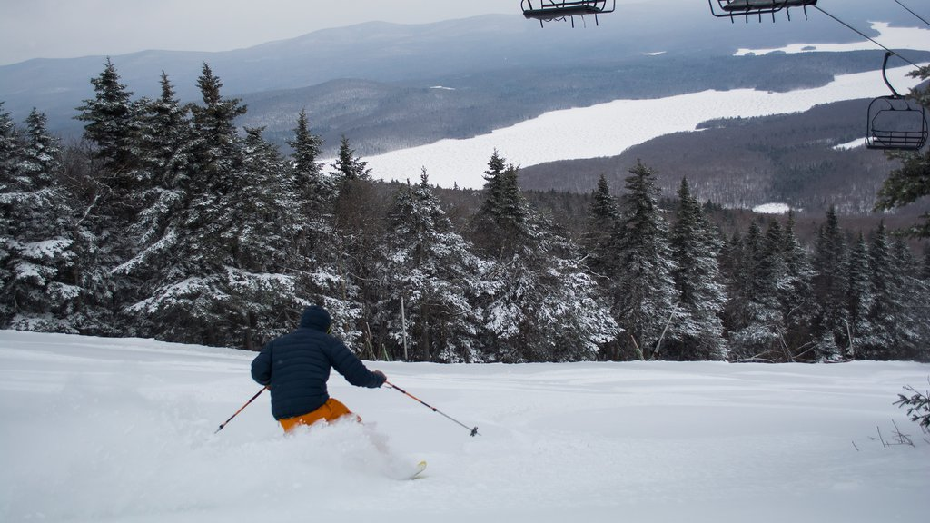 Mount Snow which includes forests, a gondola and snow skiing