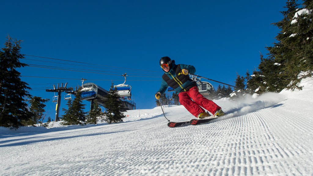 Mount Snow featuring snow skiing, a gondola and snow