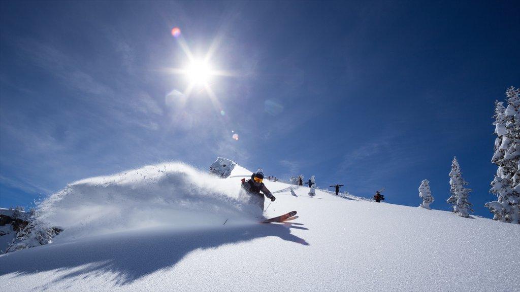 Complejo vacacional Grand Targhee mostrando esquiar en la nieve y nieve y también un hombre