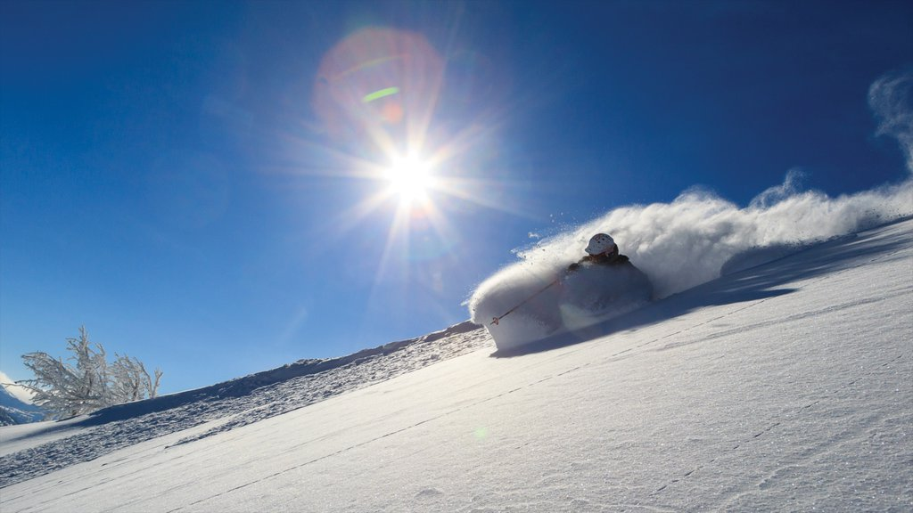 Grand Targhee Resort featuring snow and snow skiing as well as an individual male