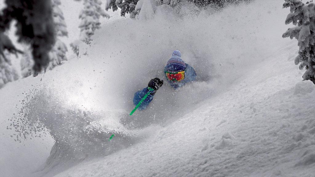 Complejo vacacional Grand Targhee ofreciendo nieve y esquiar en la nieve y también un hombre