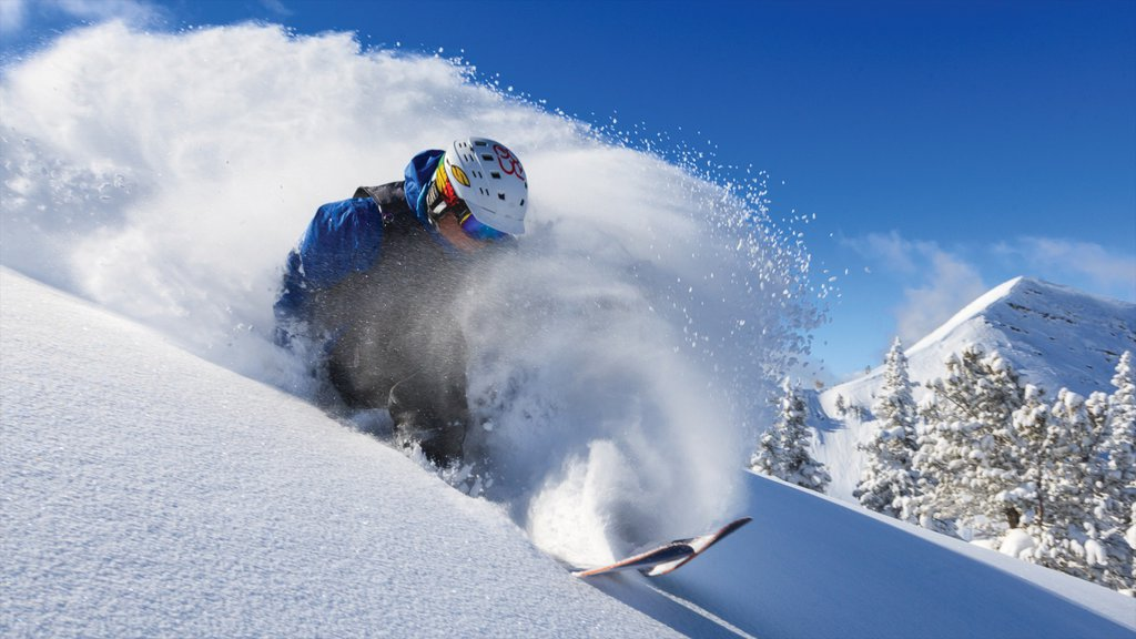 Grand Targhee Resort which includes snow and snow skiing as well as an individual male