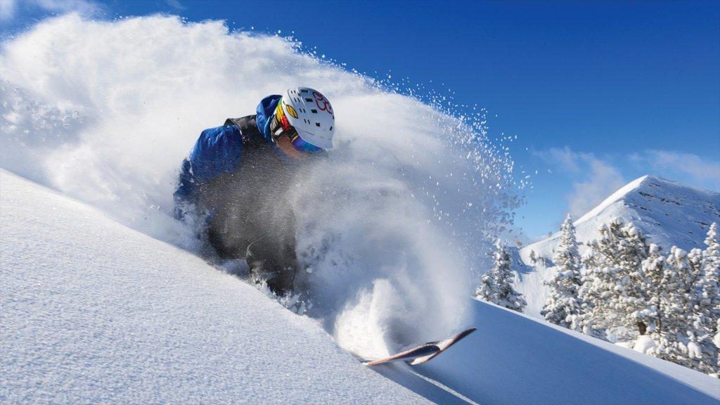 Complejo vacacional Grand Targhee ofreciendo esquiar en la nieve y nieve y también un hombre