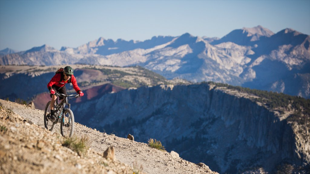 Mammoth Mountain Ski Resort showing tranquil scenes, mountain biking and mountains