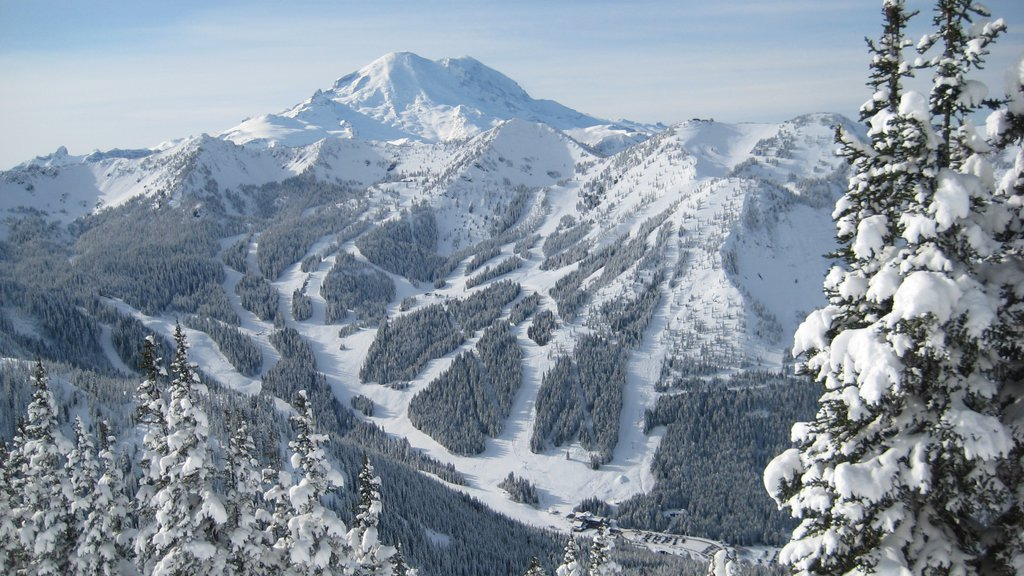 Crystal Mountain Ski Area which includes snow, landscape views and mountains