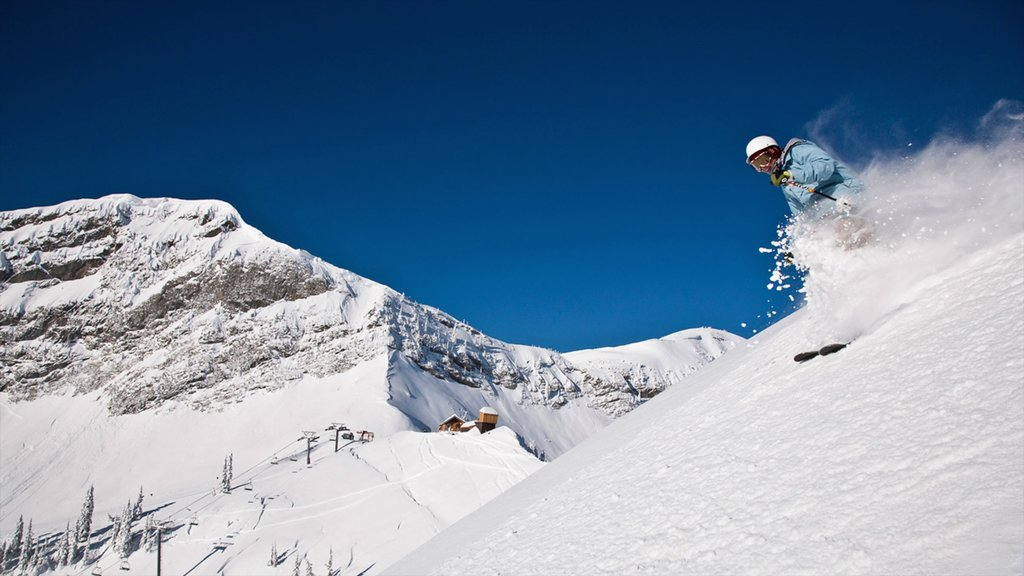 Fernie Alpine Resort featuring snow skiing, snow and mountains