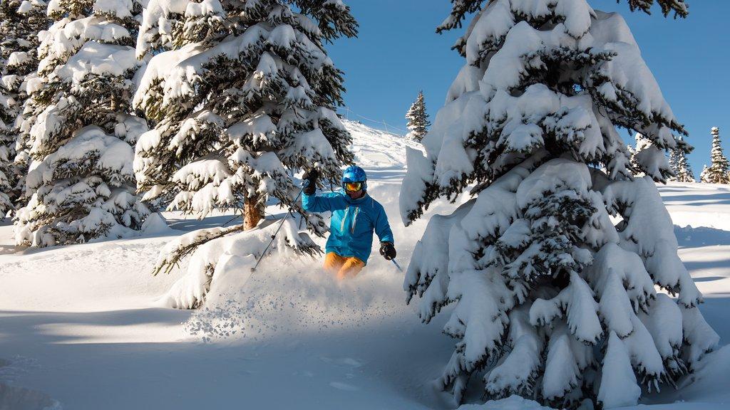 Marmot Basin mostrando esquiar en la nieve y nieve y también una mujer