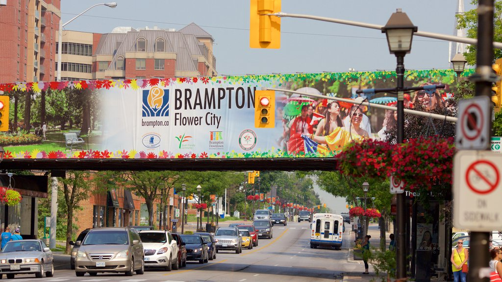 Brampton featuring a city, street scenes and signage
