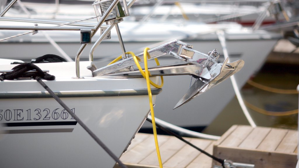 Oakville showing sailing, boating and a marina